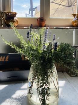Immagine di vaso trasparente con rametti di rosmarino fiorito all'interno